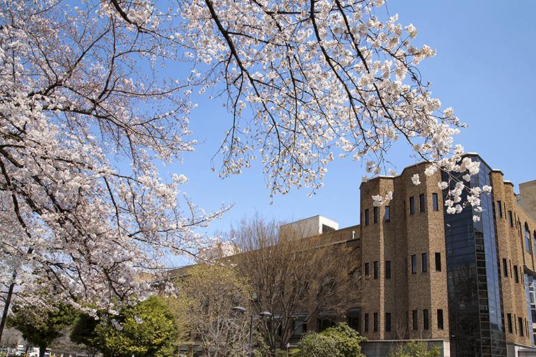 日本一医学部設置大学が多く、受験にも便利